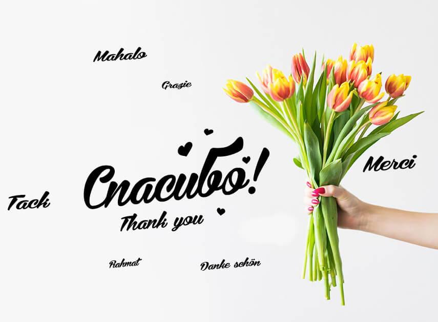 Спасибо на разных языках и букет тюльпанов