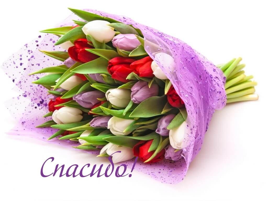 Букет тюльпанов и спасибо!