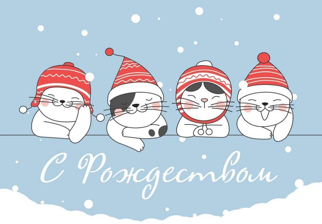 Котята с Рождеством
