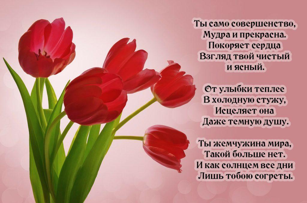 Тюльпаны и красивые комплимент девушке в стихах