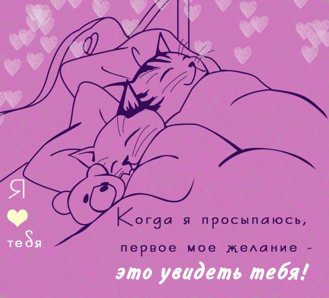 Я люблю тебя и просыпаюсь чтоб увидеть тебя