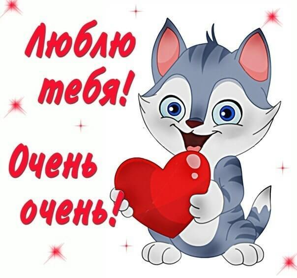 Милый котенок - признание в любви